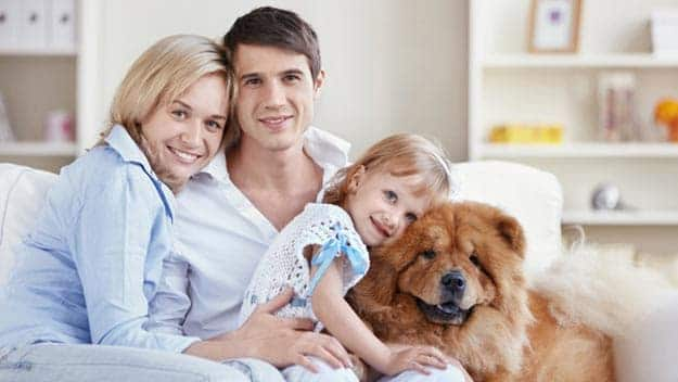 Wills & Trusts dog-young-family Direct Wills North Wembley